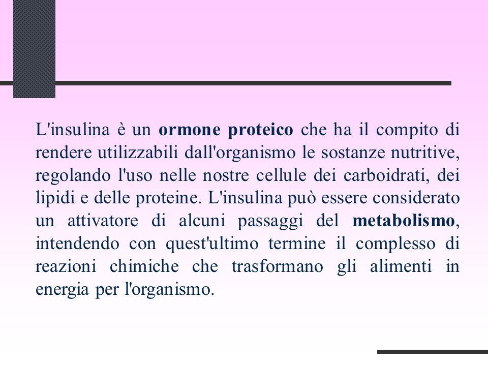 L insulina è un ormone proteico che ha il compito di rendere utilizzabili dall organismo le sostanze nutritive, regolando l uso nelle nostre cellule dei carboidrati, dei lipidi e delle proteine.