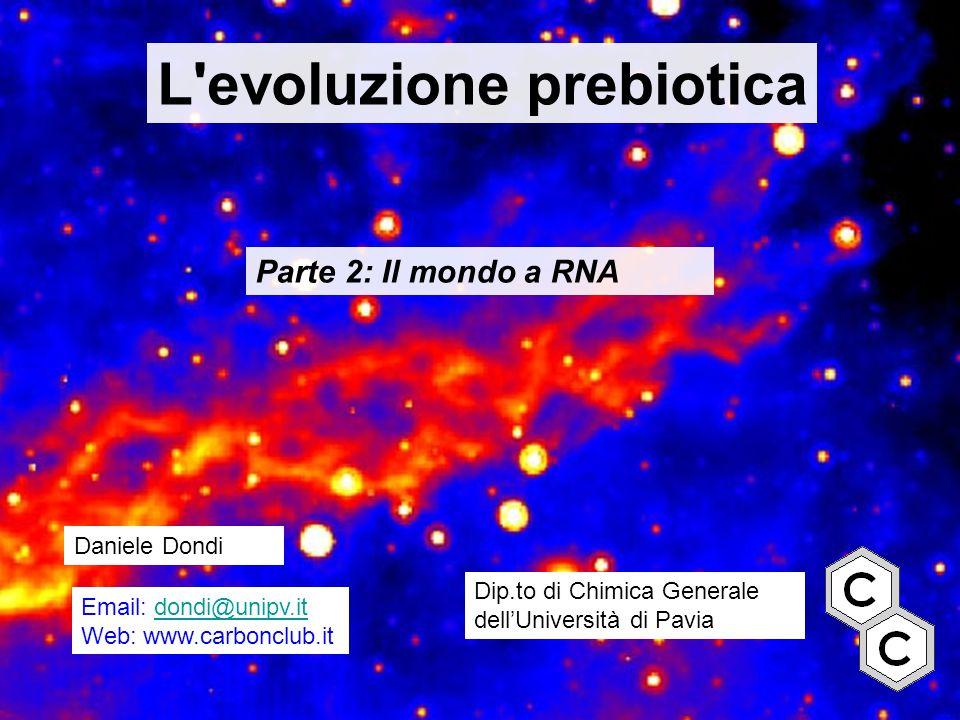L'evoluzione prebiotica Parte 2: Il mondo a RNA Daniele Dondi Dip.to di Chimica Generale dell'Università di Pavia Email: dondi@unipv.itdondi@unipv.it