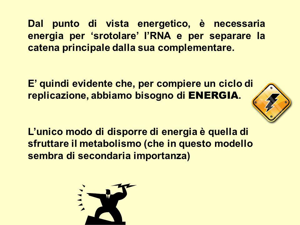 Dal punto di vista energetico, è necessaria energia per 'srotolare' l'RNA e per separare la catena principale dalla sua complementare. E' quindi evide