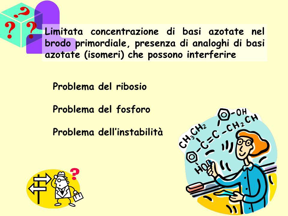 Limitata concentrazione di basi azotate nel brodo primordiale, presenza di analoghi di basi azotate (isomeri) che possono interferire Problema del rib