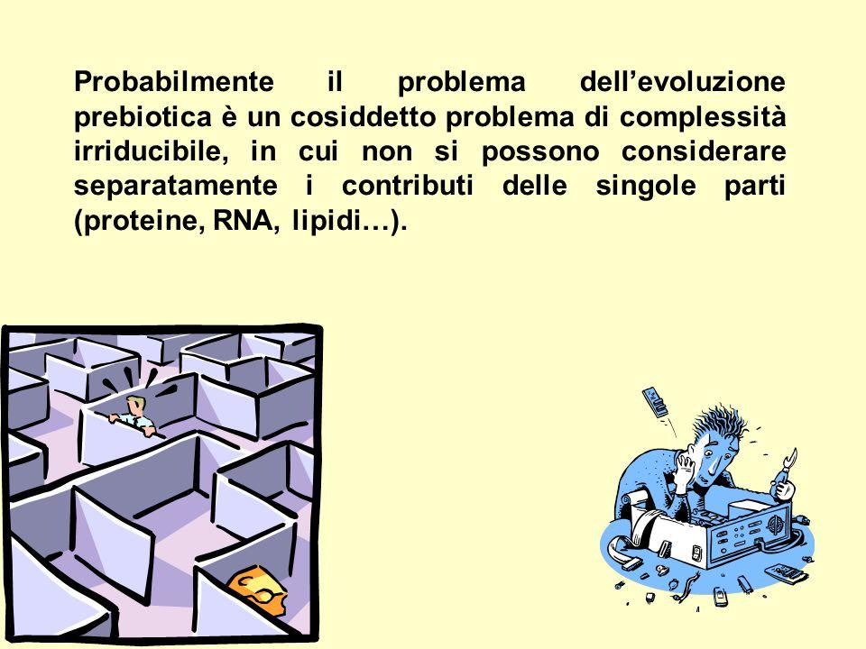 Probabilmente il problema dell'evoluzione prebiotica è un cosiddetto problema di complessità irriducibile, in cui non si possono considerare separatam