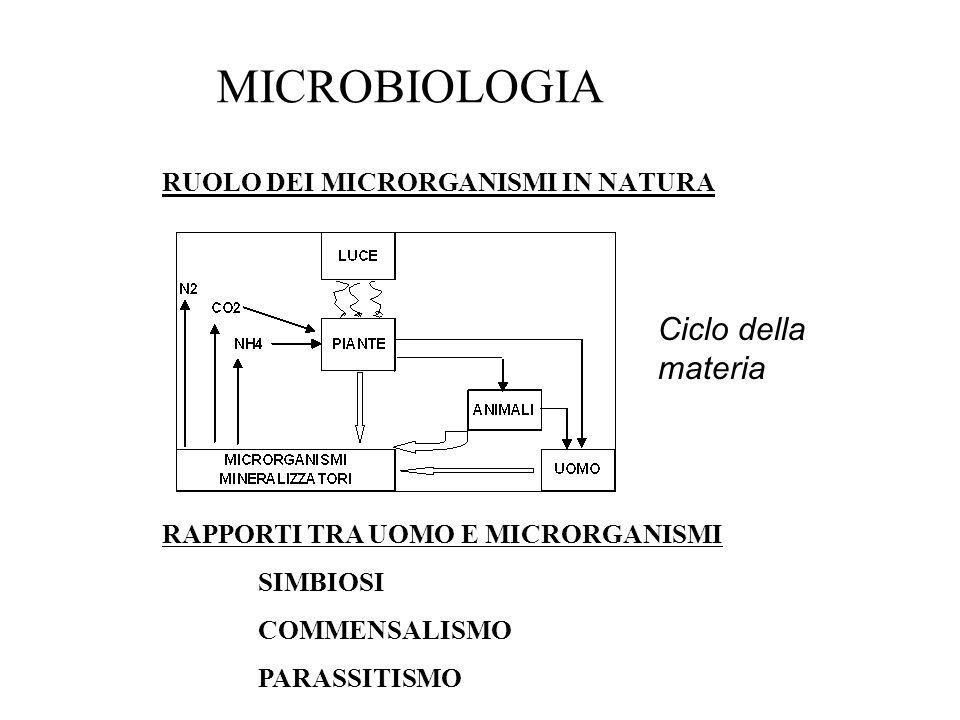 MICROBIOLOGIA RUOLO DEI MICRORGANISMI IN NATURA RAPPORTI TRA UOMO E MICRORGANISMI SIMBIOSI COMMENSALISMO PARASSITISMO Ciclo della materia