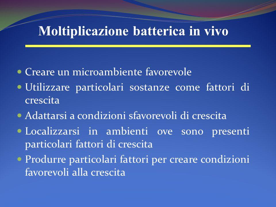 Creare un microambiente favorevole Utilizzare particolari sostanze come fattori di crescita Adattarsi a condizioni sfavorevoli di crescita Localizzars