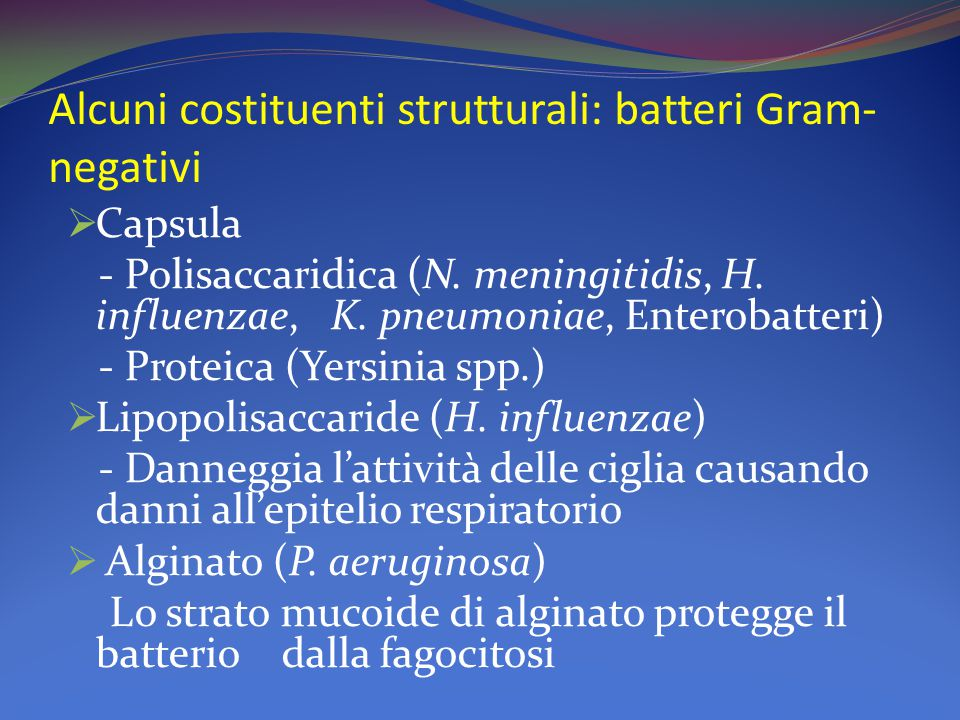 Alcuni costituenti strutturali: batteri Gram- negativi  Capsula - Polisaccaridica (N. meningitidis, H. influenzae, K. pneumoniae, Enterobatteri) - Pr