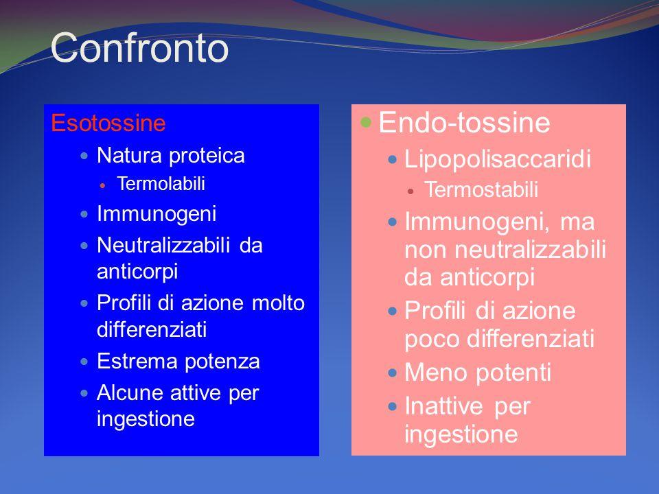 Confronto EsotossineEsotossine Natura proteica Termolabili Immunogeni Neutralizzabili da anticorpi Profili di azione molto differenziati Estrema poten