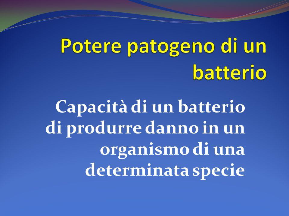 Capacità di un batterio di produrre danno in un organismo di una determinata specie