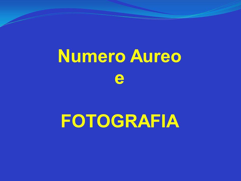 Numero Aureo e FOTOGRAFIA