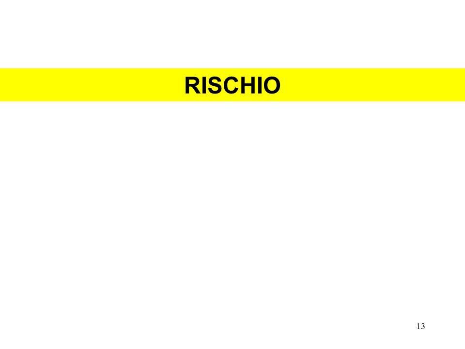 RISCHIO 13