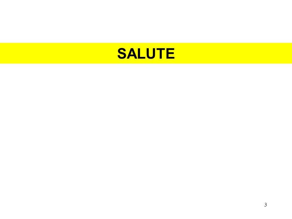 SALUTE 3