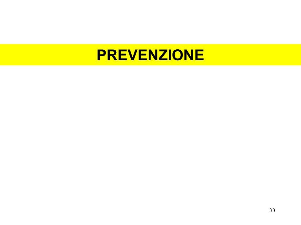 PREVENZIONE 33
