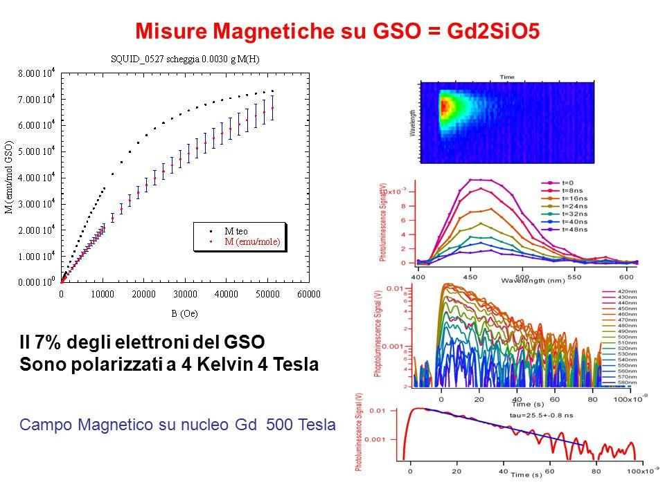 Misure Magnetiche su GSO = Gd2SiO5 Il 7% degli elettroni del GSO Sono polarizzati a 4 Kelvin 4 Tesla Campo Magnetico su nucleo Gd 500 Tesla