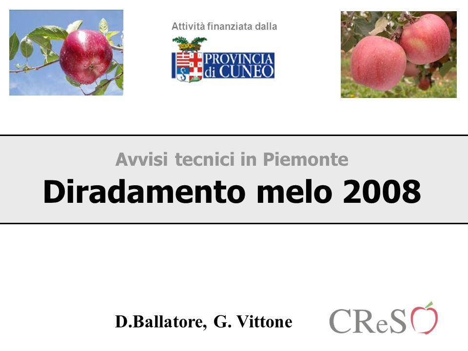 Avvisi tecnici in Piemonte Diradamento melo 2008 Attività finanziata dalla D.Ballatore, G. Vittone