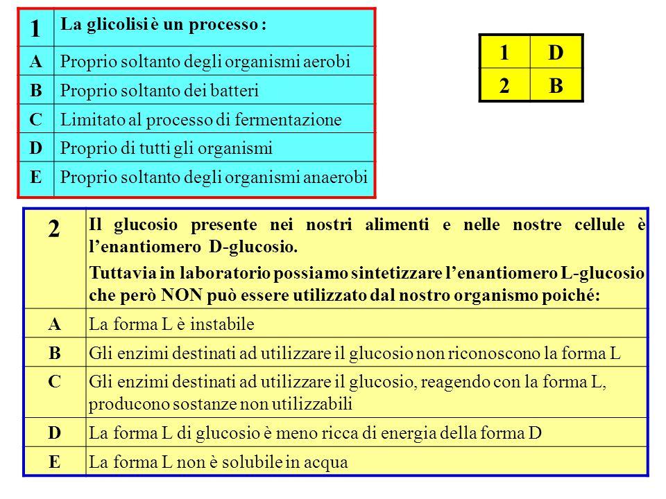 1 La glicolisi è un processo : AProprio soltanto degli organismi aerobi BProprio soltanto dei batteri CLimitato al processo di fermentazione DProprio