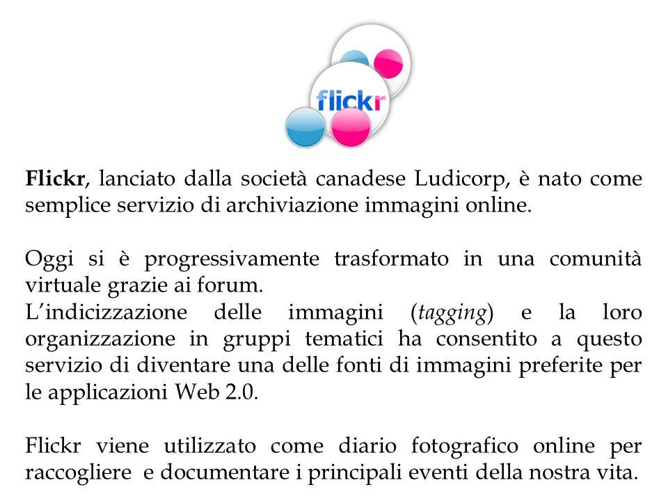 Flickr, lanciato dalla società canadese Ludicorp, è nato come semplice servizio di archiviazione immagini online. Oggi si è progressivamente trasforma