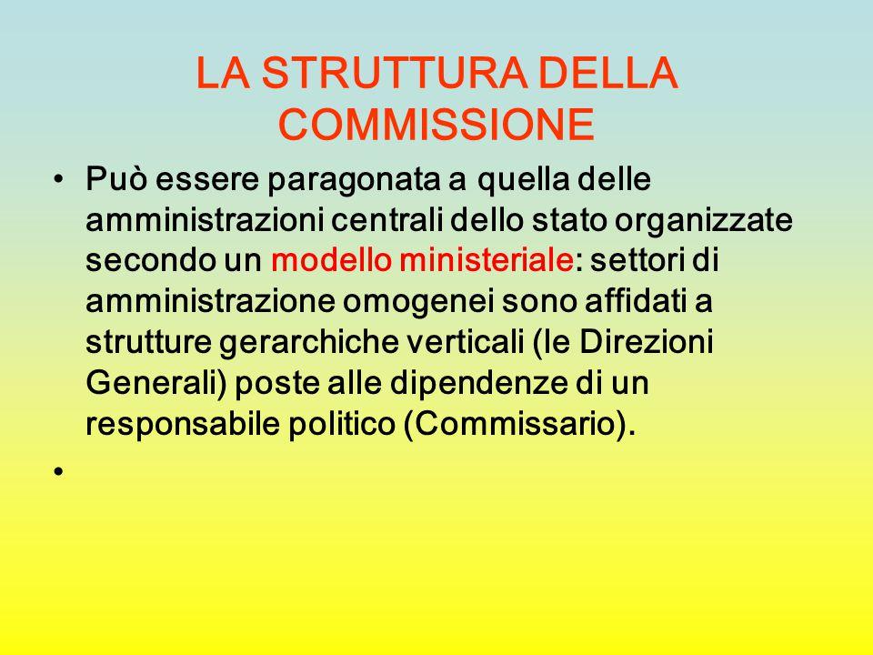 LA STRUTTURA DELLA COMMISSIONE Può essere paragonata a quella delle amministrazioni centrali dello stato organizzate secondo un modello ministeriale: