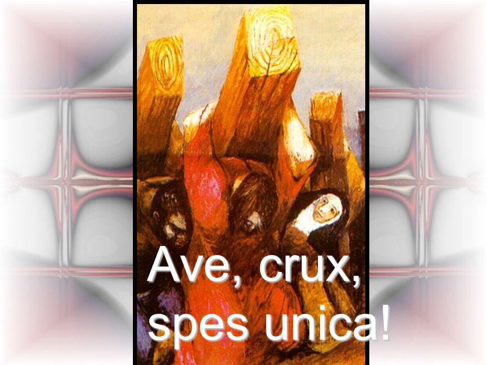 Ave, crux, spes unica!