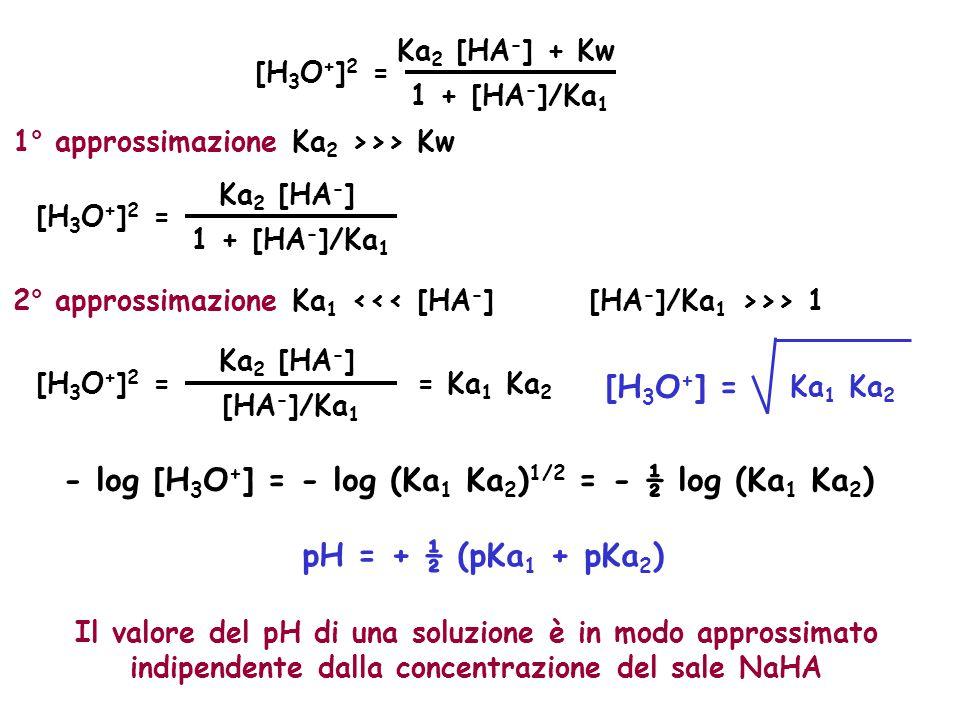[H 3 O + ] 2 = Ka 2 [HA - ] + Kw 1 + [HA - ]/Ka 1 1° approssimazione Ka 2 >>> Kw [H 3 O + ] 2 = Ka 2 [HA - ] 1 + [HA - ]/Ka 1 2° approssimazione Ka 1