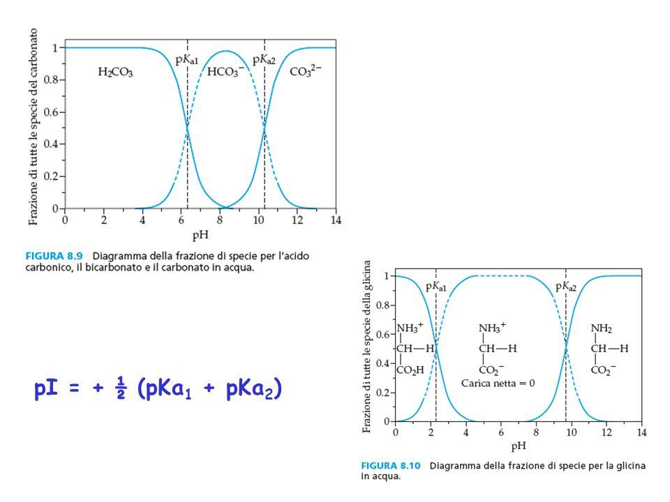 pI = + ½ (pKa 1 + pKa 2 )