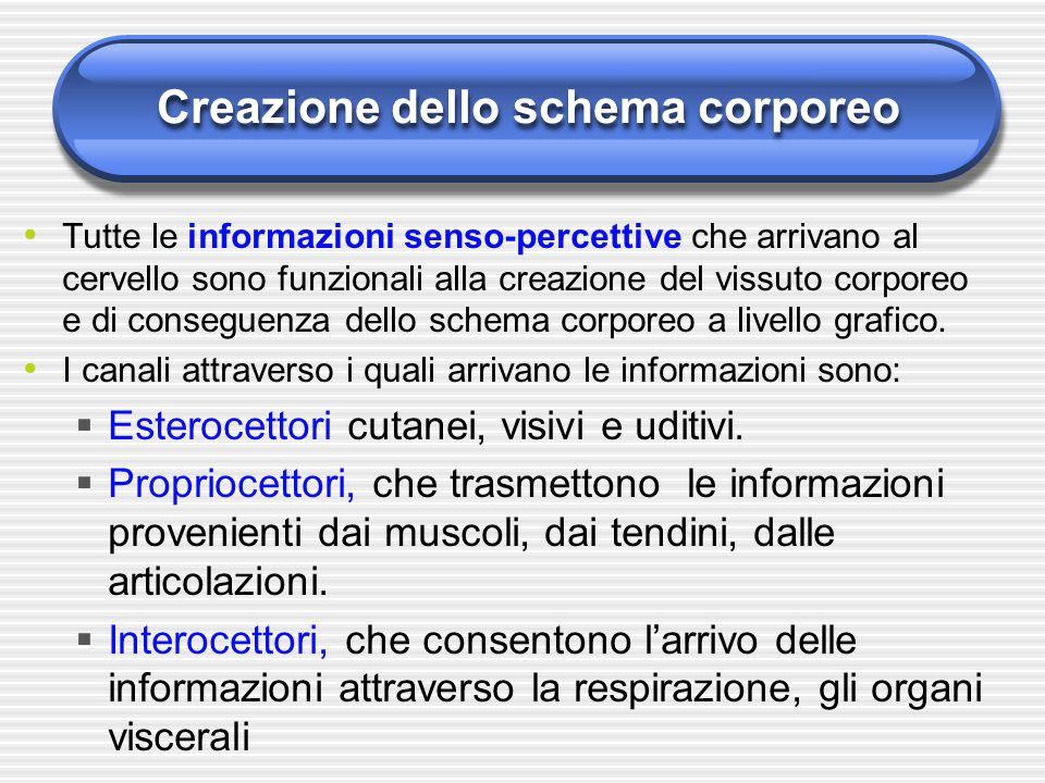 Creazione dello schema corporeo Tutte le informazioni senso-percettive che arrivano al cervello sono funzionali alla creazione del vissuto corporeo e