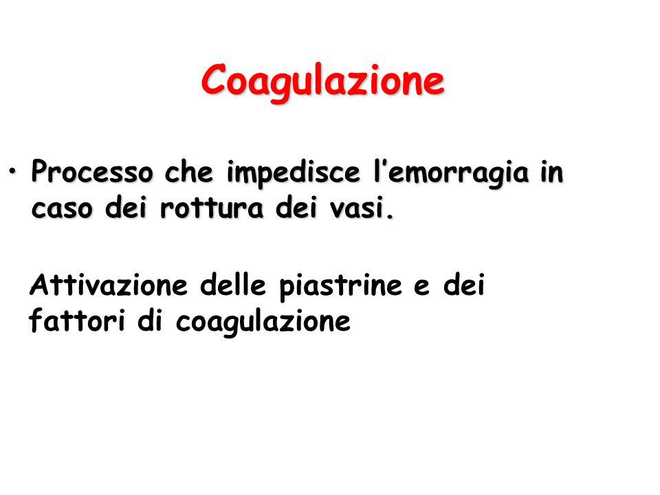 Coagulazione Processo che impedisce l'emorragia in caso dei rottura dei vasi.Processo che impedisce l'emorragia in caso dei rottura dei vasi. Attivazi