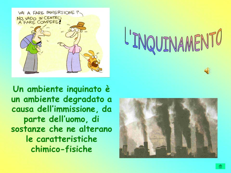 Un ambiente inquinato è un ambiente degradato a causa dell'immissione, da parte dell'uomo, di sostanze che ne alterano le caratteristiche chimico-fisi
