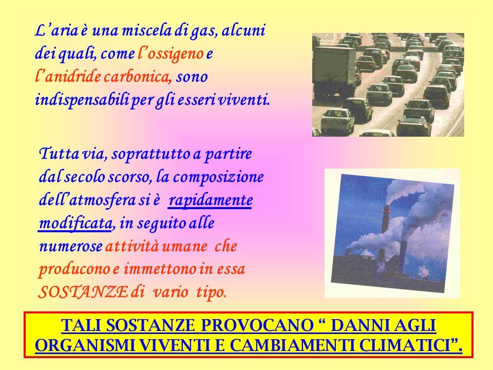 L'aria è una miscela di gas, alcuni dei quali, come l'ossigeno e l'anidride carbonica, sono indispensabili per gli esseri viventi. Tutta via, soprattu
