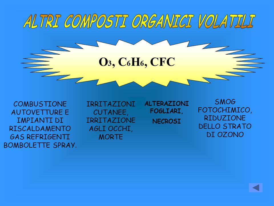 O 3, C 6 H 6, CFC COMBUSTIONE AUTOVETTURE E IMPIANTI DI RISCALDAMENTO GAS REFRIGENTI BOMBOLETTE SPRAY. IRRITAZIONI CUTANEE, IRRITAZIONE AGLI OCCHI, MO