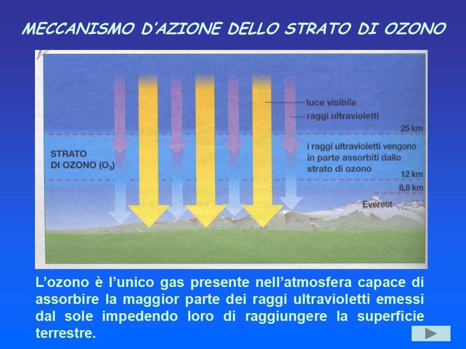 MECCANISMO D'AZIONE DELLO STRATO DI OZONO L'ozono è l'unico gas presente nell'atmosfera capace di assorbire la maggior parte dei raggi ultravioletti e