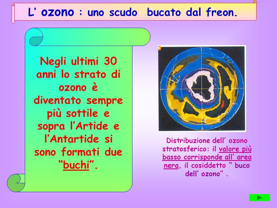 L' ozono : uno scudo bucato dal freon. Negli ultimi 30 anni lo strato di ozono è diventato sempre più sottile e sopra l'Artide e l'Antartide si sono f
