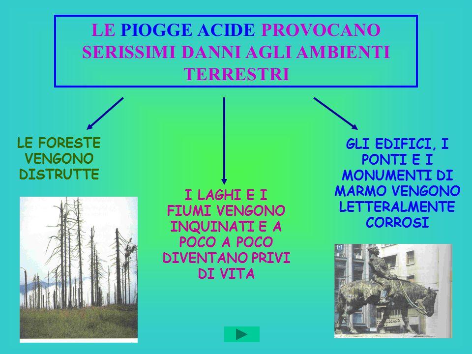 LE PIOGGE ACIDE PROVOCANO SERISSIMI DANNI AGLI AMBIENTI TERRESTRI LE FORESTE VENGONO DISTRUTTE I LAGHI E I FIUMI VENGONO INQUINATI E A POCO A POCO DIV