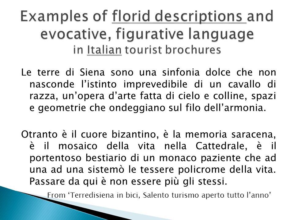 Le terre di Siena sono una sinfonia dolce che non nasconde l'istinto imprevedibile di un cavallo di razza, un'opera d'arte fatta di cielo e colline, spazi e geometrie che ondeggiano sul filo dell'armonia.