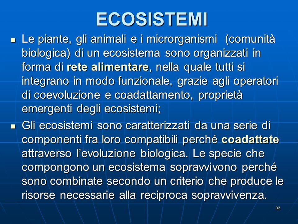 32ECOSISTEMI Le piante, gli animali e i microrganismi (comunità biologica) di un ecosistema sono organizzati in forma di rete alimentare, nella quale