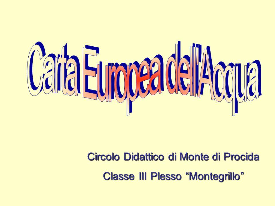 """Circolo Didattico di Monte di Procida Classe III Plesso """"Montegrillo"""""""