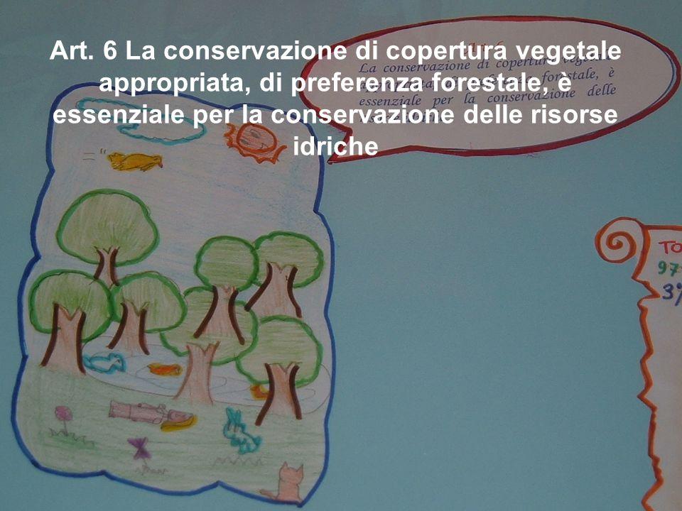 Art. 6 La conservazione di copertura vegetale appropriata, di preferenza forestale, è essenziale per la conservazione delle risorse idriche