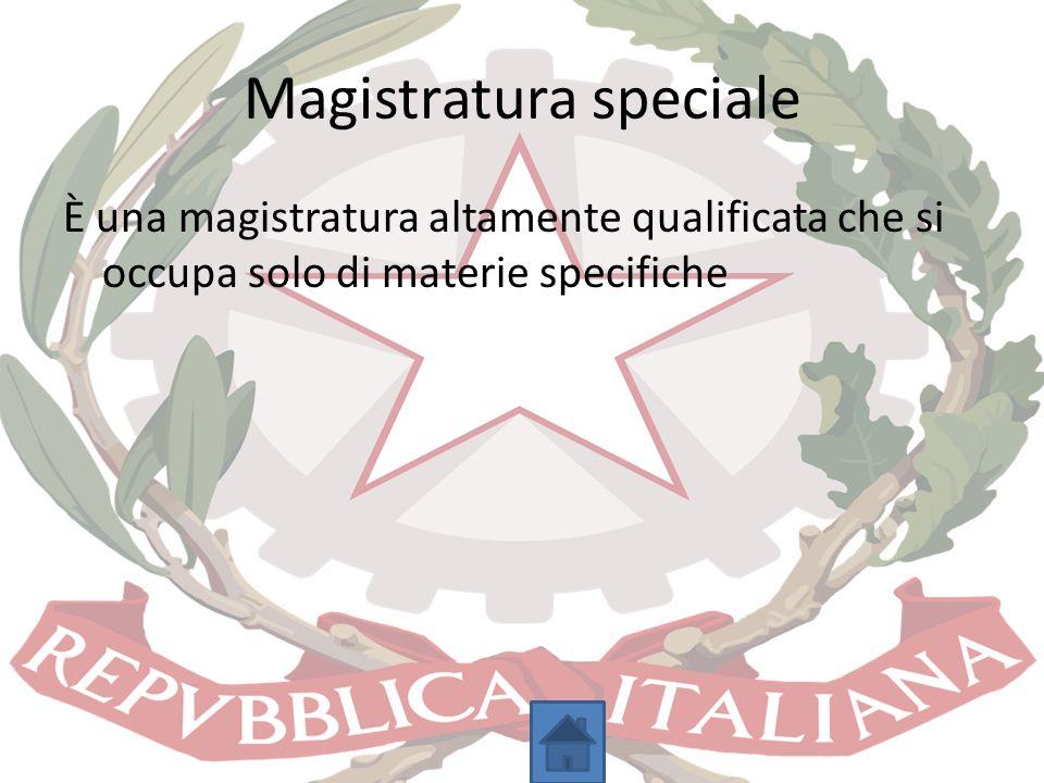 Magistratura speciale È una magistratura altamente qualificata che si occupa solo di materie specifiche