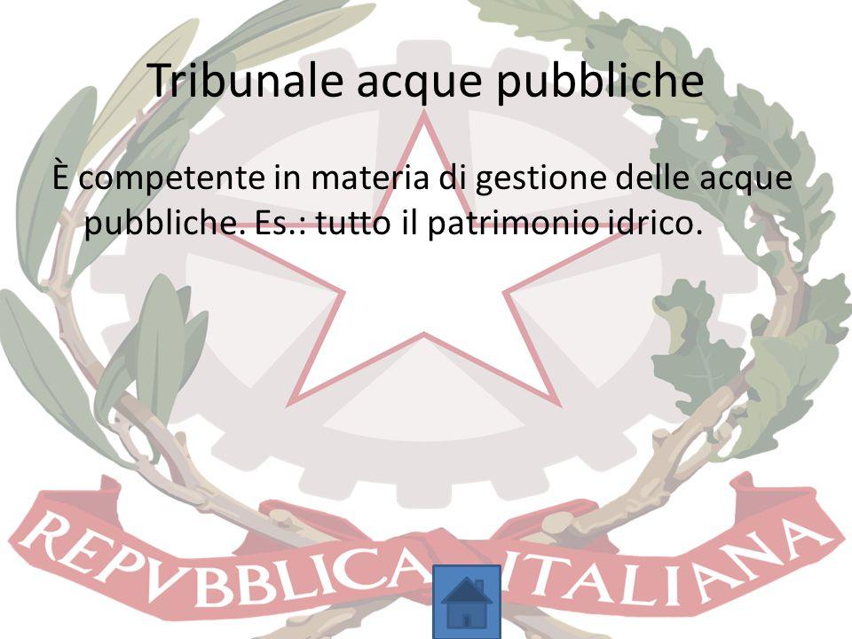 Tribunale acque pubbliche È competente in materia di gestione delle acque pubbliche. Es.: tutto il patrimonio idrico.