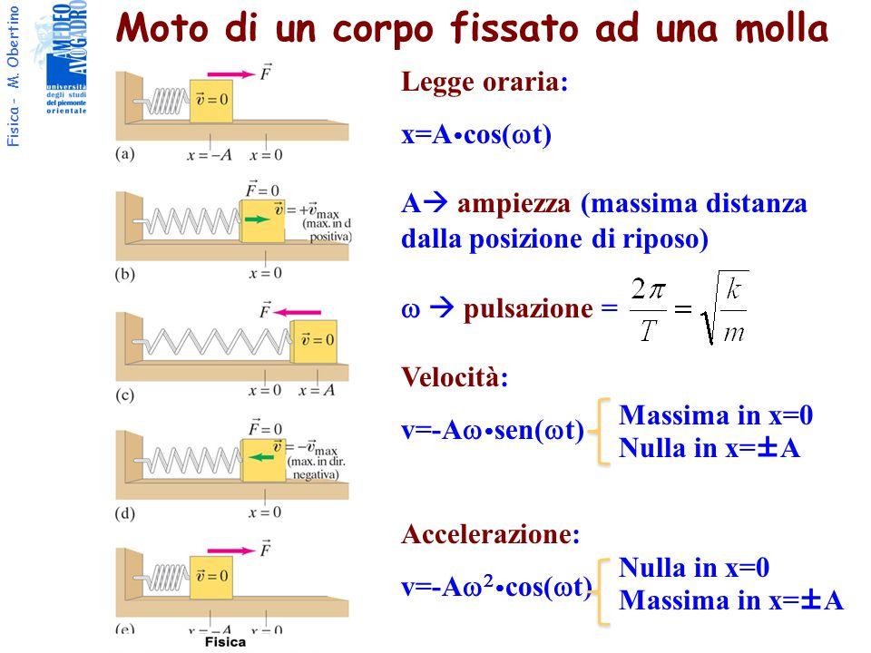 Fisica - M. Obertino Moto di un corpo fissato ad una molla Legge oraria: x=A  cos(  t) A  ampiezza (massima distanza dalla posizione di riposo)  