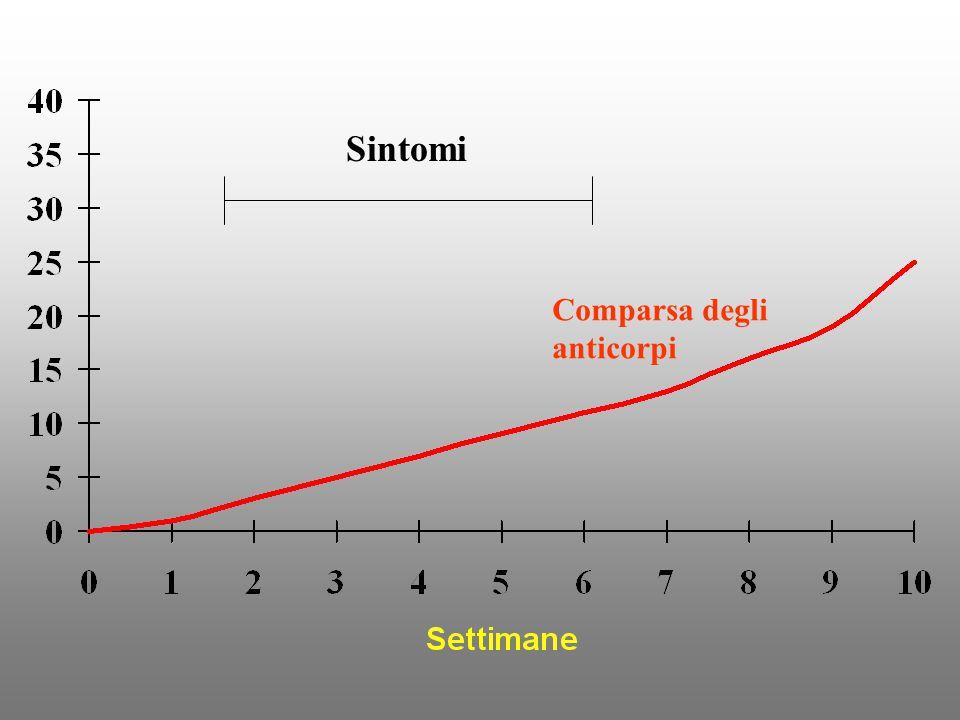 Sintomi Comparsa degli anticorpi