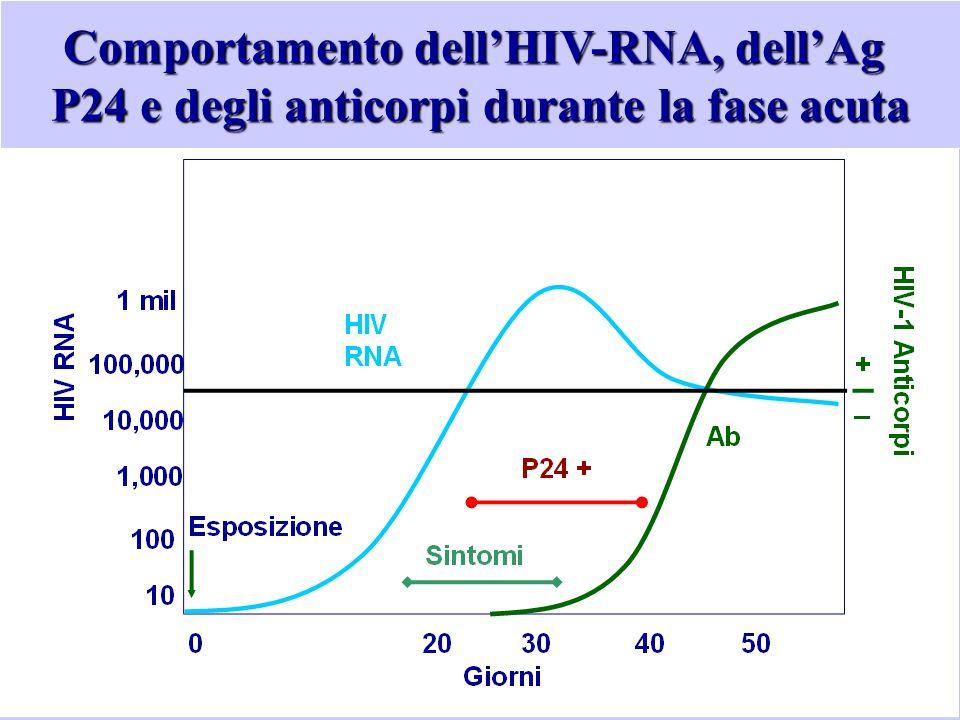 Comportamento dell'HIV-RNA, dell'Ag P24 e degli anticorpi durante la fase acuta