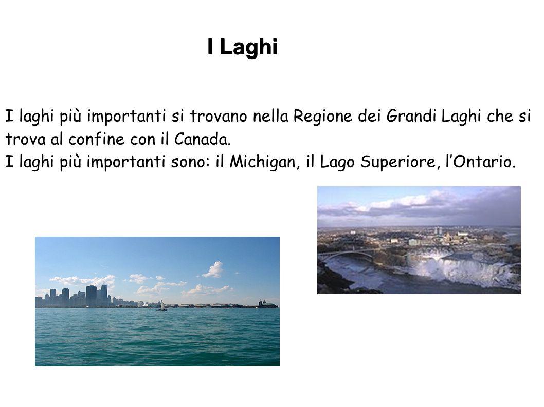 I laghi più importanti si trovano nella Regione dei Grandi Laghi che si trova al confine con il Canada. I laghi più importanti sono: il Michigan, il L