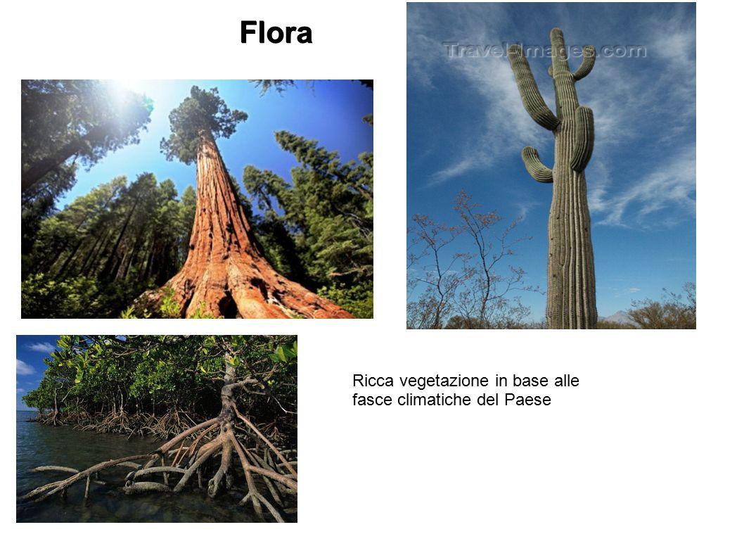 Flora Ricca vegetazione in base alle fasce climatiche del Paese