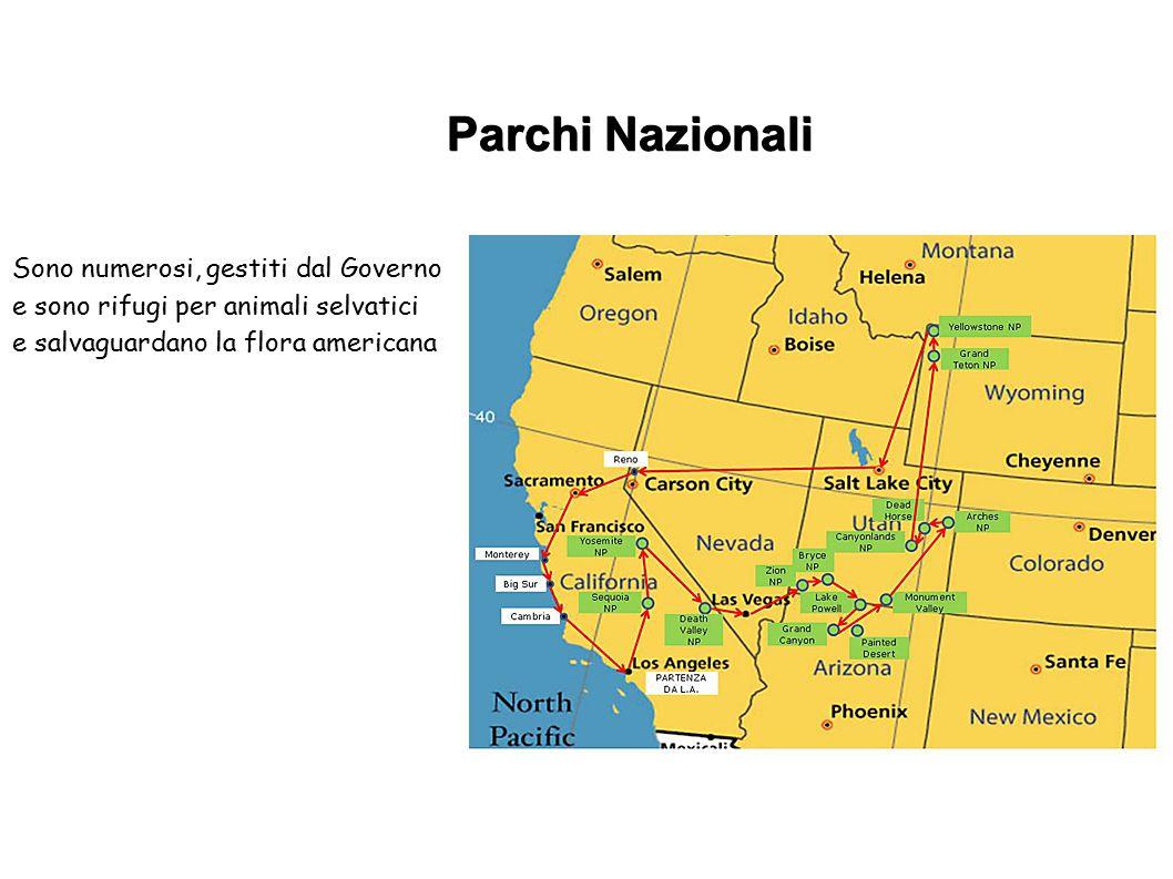 Parchi Nazionali Sono numerosi, gestiti dal Governo e sono rifugi per animali selvatici e salvaguardano la flora americana