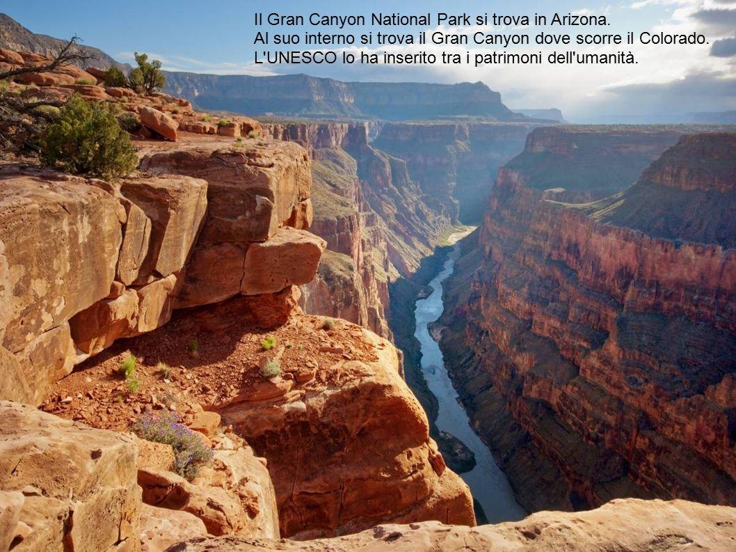 Il Gran Canyon National Park si trova in Arizona. Al suo interno si trova il Gran Canyon dove scorre il Colorado. L'UNESCO lo ha inserito tra i patrim