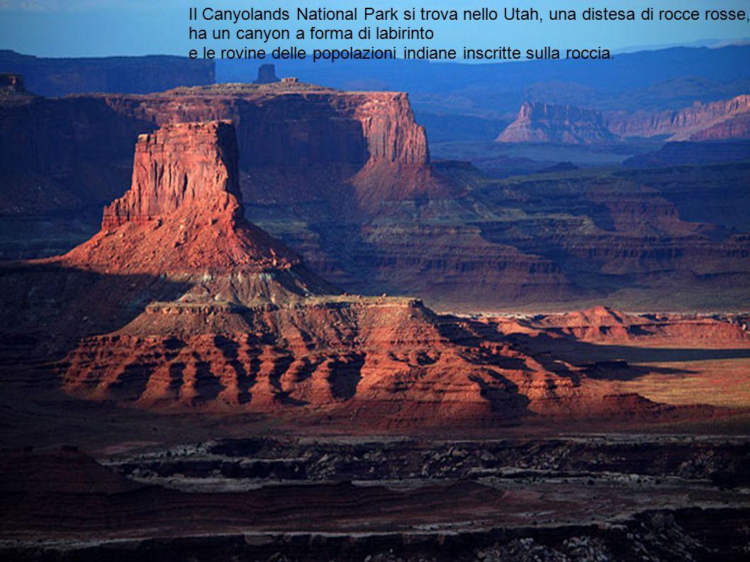 Il Canyolands National Park si trova nello Utah, una distesa di rocce rosse, ha un canyon a forma di labirinto e le rovine delle popolazioni indiane i