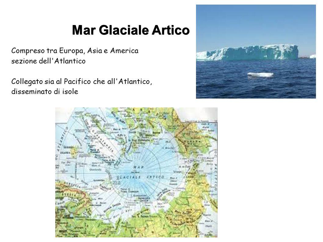 Mar Glaciale Artico Compreso tra Europa, Asia e America sezione dell'Atlantico Collegato sia al Pacifico che all'Atlantico, disseminato di isole