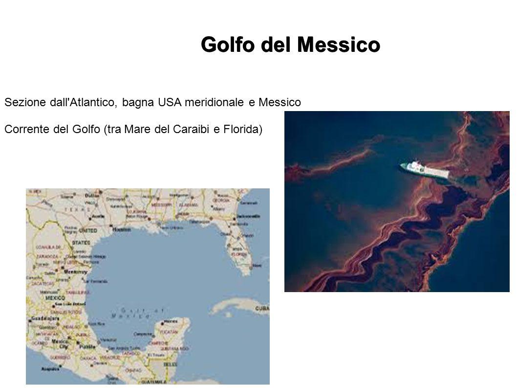 Golfo del Messico Sezione dall'Atlantico, bagna USA meridionale e Messico Corrente del Golfo (tra Mare del Caraibi e Florida)