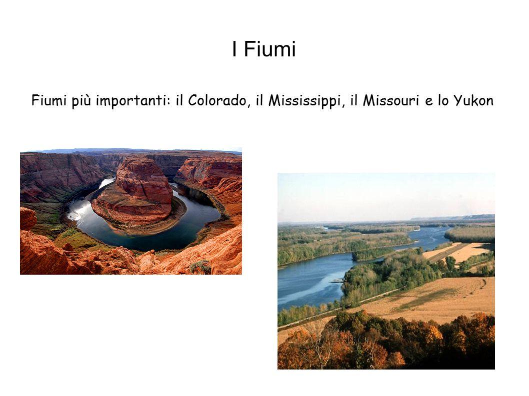 Fiumi più importanti: il Colorado, il Mississippi, il Missouri e lo Yukon I Fiumi