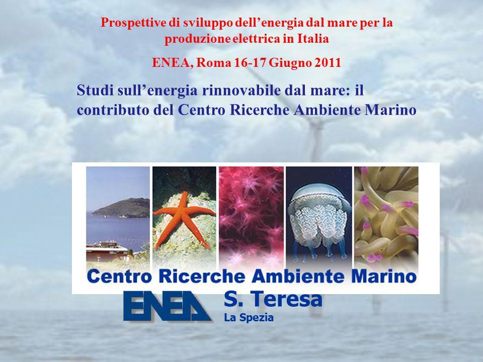 Prospettive di sviluppo dell'energia dal mare per la produzione elettrica in Italia ENEA, Roma 16-17 Giugno 2011 Studi sull'energia rinnovabile dal ma