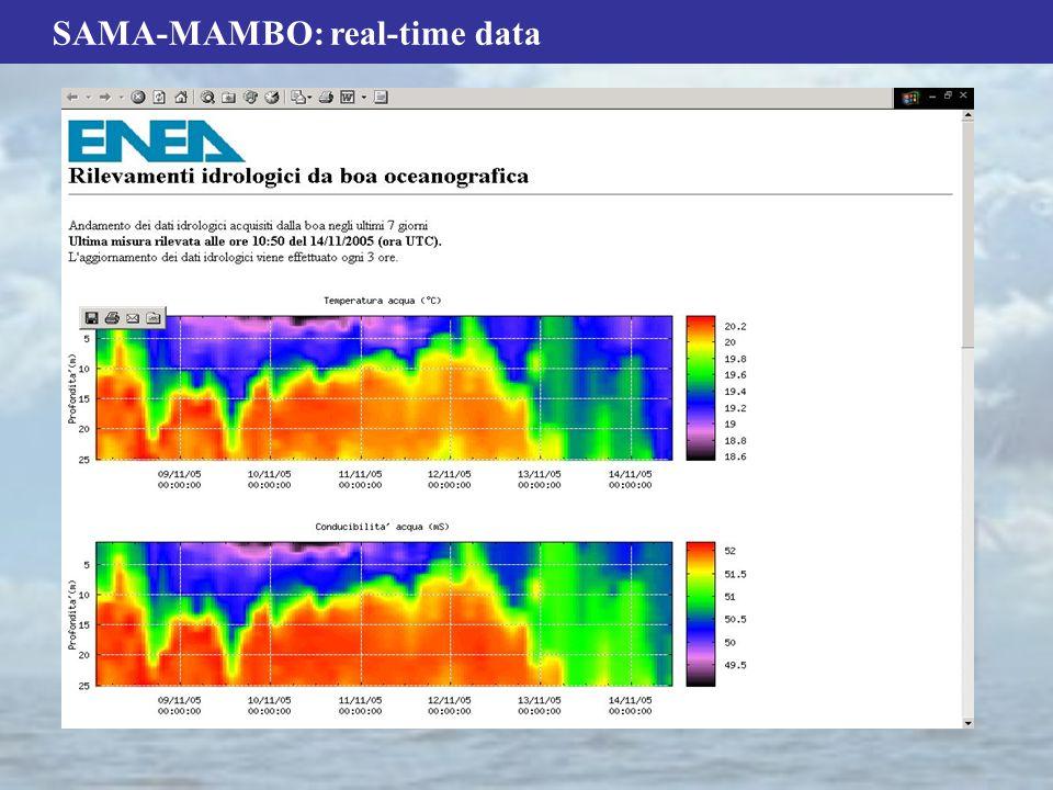 SAMA-MAMBO: real-time data