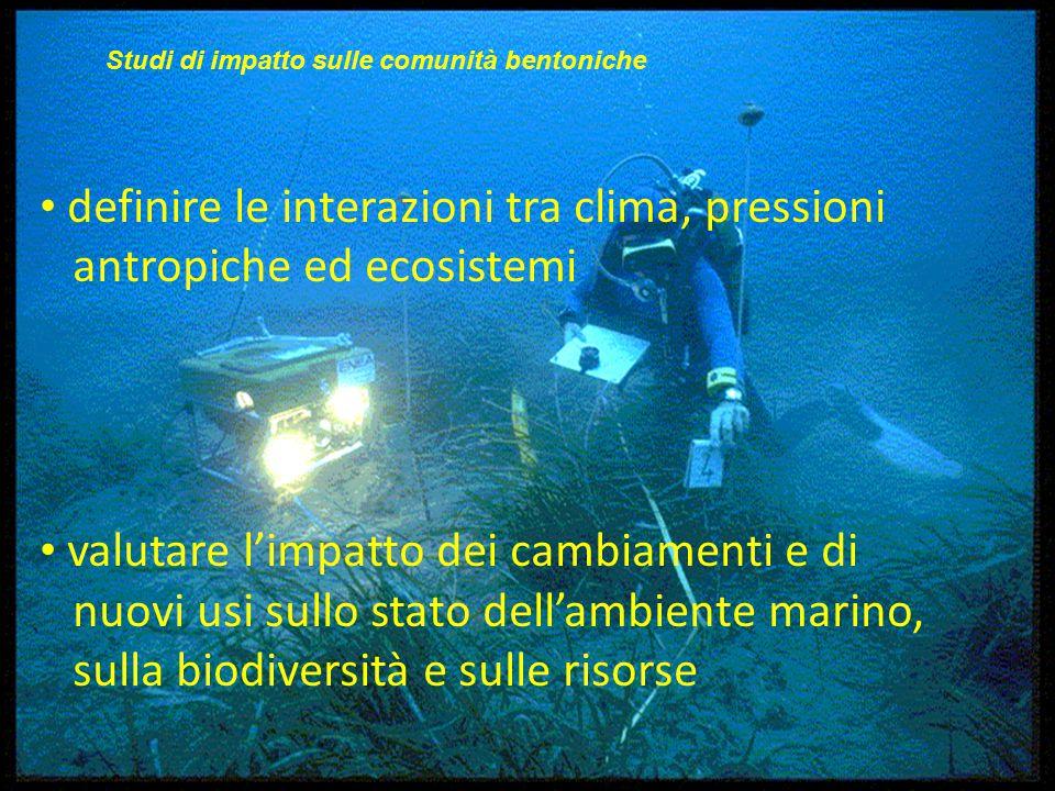 definire le interazioni tra clima, pressioni antropiche ed ecosistemi valutare l'impatto dei cambiamenti e di nuovi usi sullo stato dell'ambiente marino, sulla biodiversità e sulle risorse Studi di impatto sulle comunità bentoniche